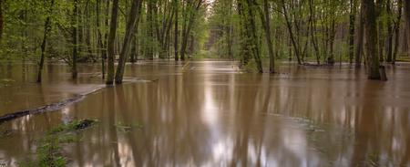 Heavy rain has made its way to the river overnight - near Hanau, Germany
