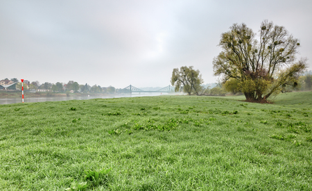 The Elbe meadow near Dresden in the early morning. In the background is the Loschwitz bridge, the Blue Wonder of Dresden - Dreden, Germany