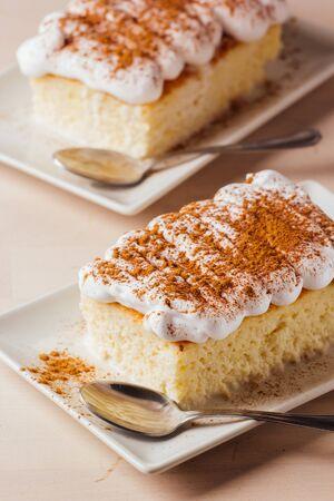 A piece of cake three milk ready to eat 版權商用圖片