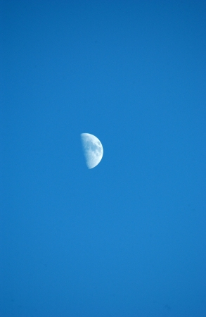just moon                      photo