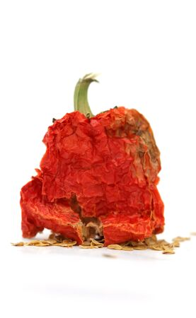 red hot dried pepper photo