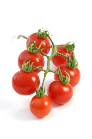 Ripe Fresh Cherry Tomatoes on Branch  photo