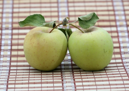 cutcat: two green ripe apples with leaves
