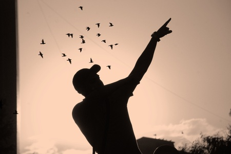 silhouette of man showing sky in sunset photo