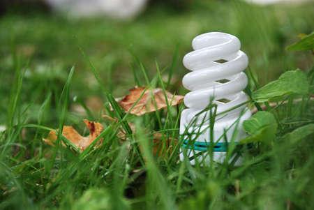 florescent light: florescent light bulb  in green grass