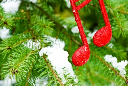 new year music note on snow and pine tree ,Christmass background Stock Photo