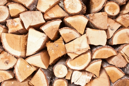 A pile of freshly cut logs outdoor photo