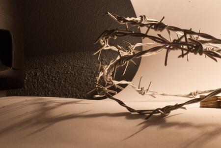 trespass: barbed wire in studio