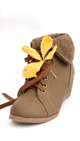 Winter shoes,female boots Stock Photo - 22938713