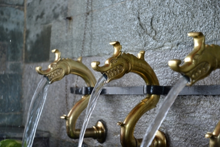 dragon like faucets