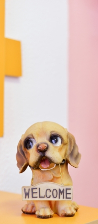 cute puppy toy welcomes you photo