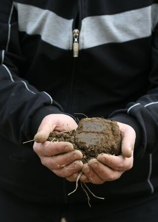 submersion: Soil on a male hands