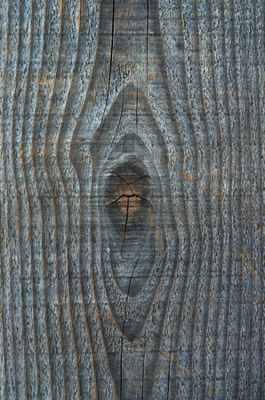 texture of a wood Stock Photo
