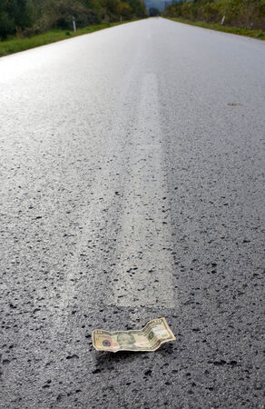 way bill: Dollar on the middle of the road