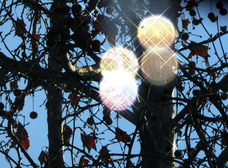 Abstract shine circles, bokeh photo