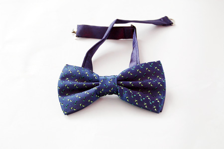 Picture of a  fashion and trendy bow tie