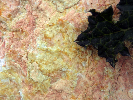 stoney: picture of a  stone texture Stock Photo