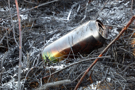 bushfire: picture of a Burned beer can after the bushfire