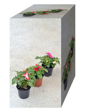 cottage fence: Flowers pot  in a shape of cube