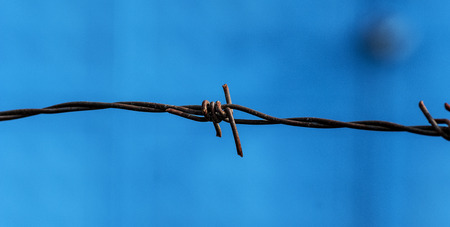 Picture of a Barbed wire against blue background photo