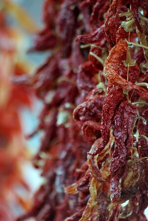 chilly: Picture of a Dried red hot chilly paprika