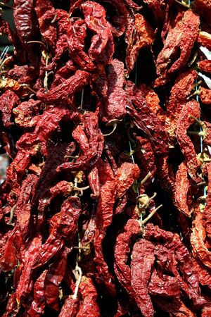 rambla: Picture of a Dried paprika in red orange shades in a market stall