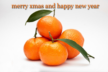 bussiness card: Picture of a unusual Xmas card with oranges Stock Photo
