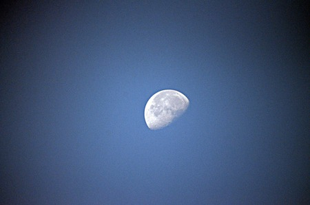half moon: Picture of a Half moon on a blue sky