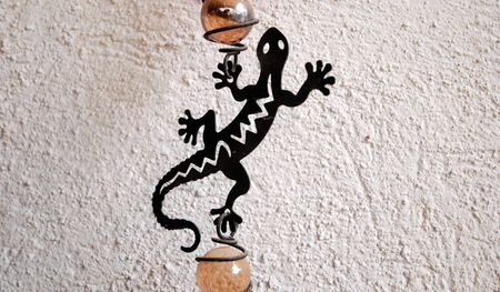 decora: Picture of a Black metal lizard
