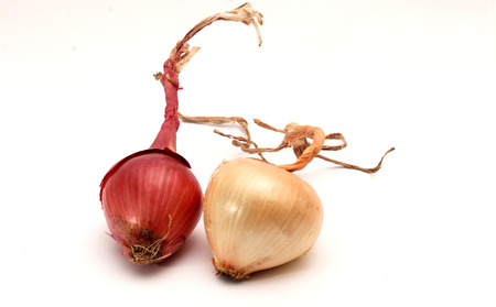 diet concept: Picture of an Onion. Food and diet concept