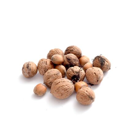 things that go together: picture of a wanuts and hazelnuts on a white background