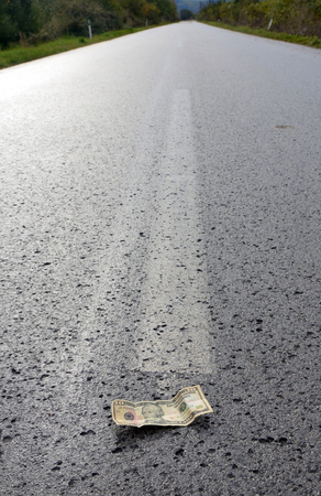 tar paper: picture of a Banknote of a dollar on the middle of the road