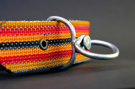 colrful: picture of a brand new colrful dog collar Stock Photo