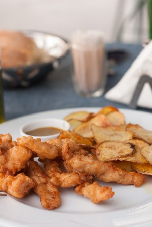 chicken fingers: Fresh fried chicken fingers in a plate Stock Photo
