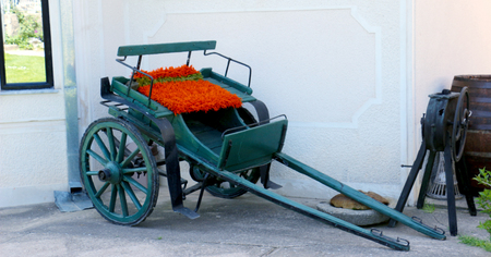 luxuriously: Picture of an Old horse carriage Stock Photo
