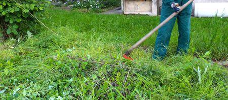 guada�a: icture de un hombre siega una hierba con una guada�a en el prado verde