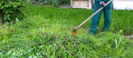 scythe: icture of a  man mows a grass with a scythe on green meadow