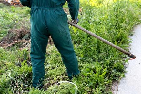 guada�a: hombre siega una hierba con una guada�a en el prado verde Foto de archivo