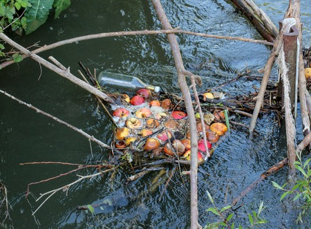 rancid: Rotten apples and glass bottle in a river.pollution concept