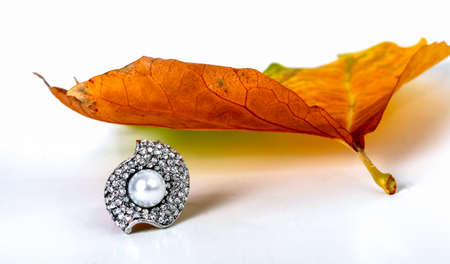 nuptials: picture of a jewelry and autumn leaf on white background