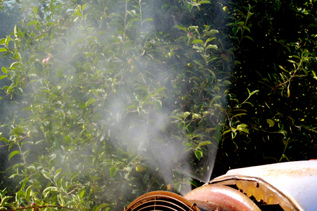 fungicide: air blast sprayer with a chemical insecticide or fungicide in the orchard Stock Photo