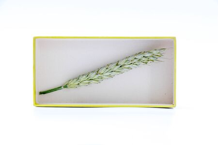 carboard box: picture of a wheat ears in a carboard box