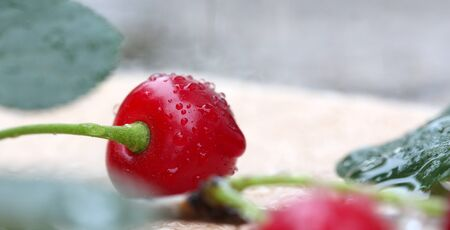 waterdrops: Waterdrops on a Sour Cherry , Macro