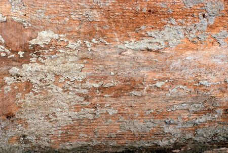 exposed concrete: Exposed Concrete with visible Wood Texture Stock Photo