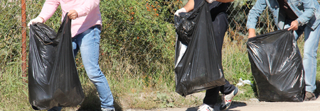 cropped: Cropped image of environmental activists collecting garbage