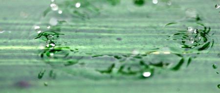 levitate: picture of a rain or waterdrops.season concept