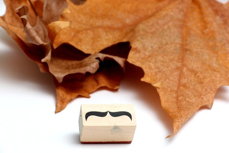 picture of a moustaches rubber stamp. Movember mens health awareness concept. Stock Photo