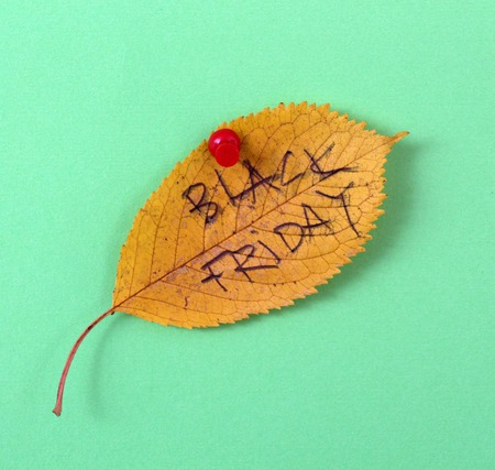 white pushpin: picture of a autumn walnut leaves with handwritten text black friday Stock Photo
