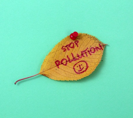 stop pollution: picture of a autumn walnut leaves with handwritten text stop pollution Stock Photo