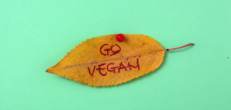 white pushpin: picture of a autumn walnut leaves with handwritten text go vegan Stock Photo